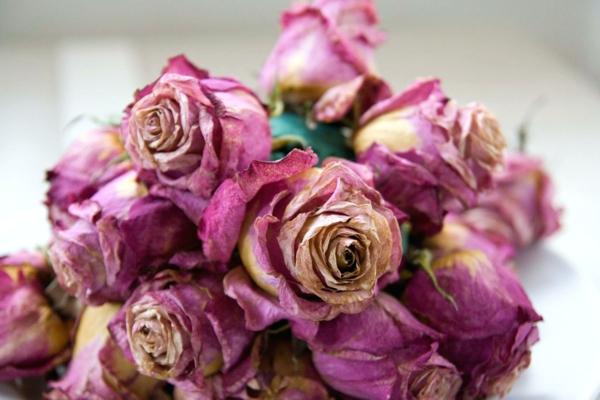 conserver un bouquet de mariage fleurs séchées gel de silice