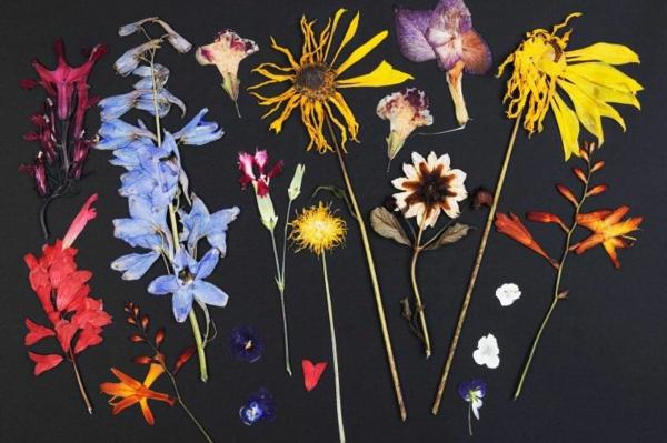 conserver un bouquet de mariage fleurs séchées papier parchemin