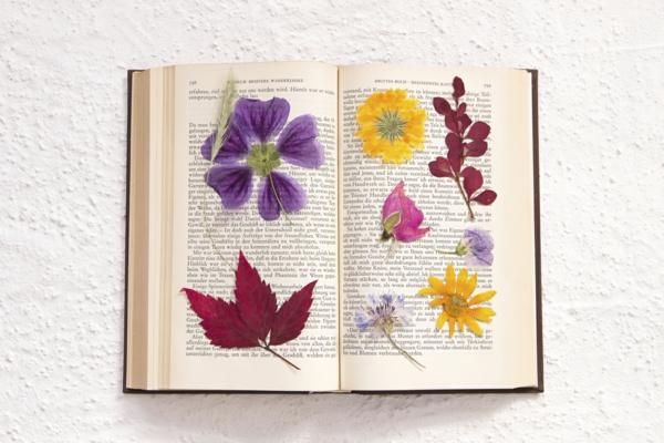 conserver un bouquet de mariage séchage dans un livre