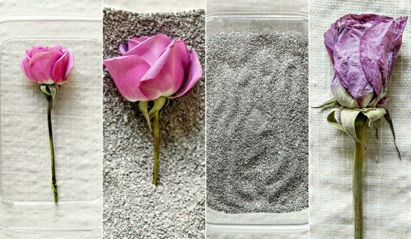 conserver un bouquet de mariage sable