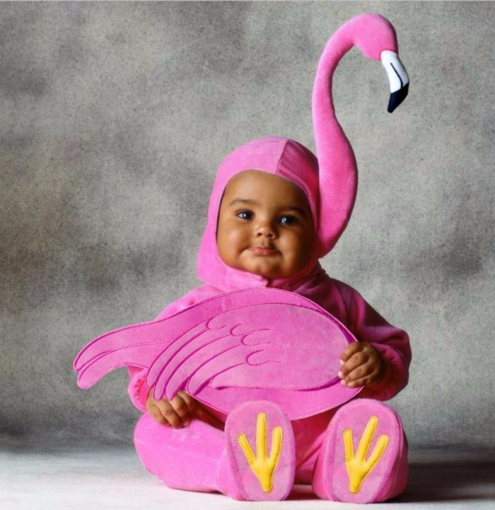flamant rose déguisement halloween bébé