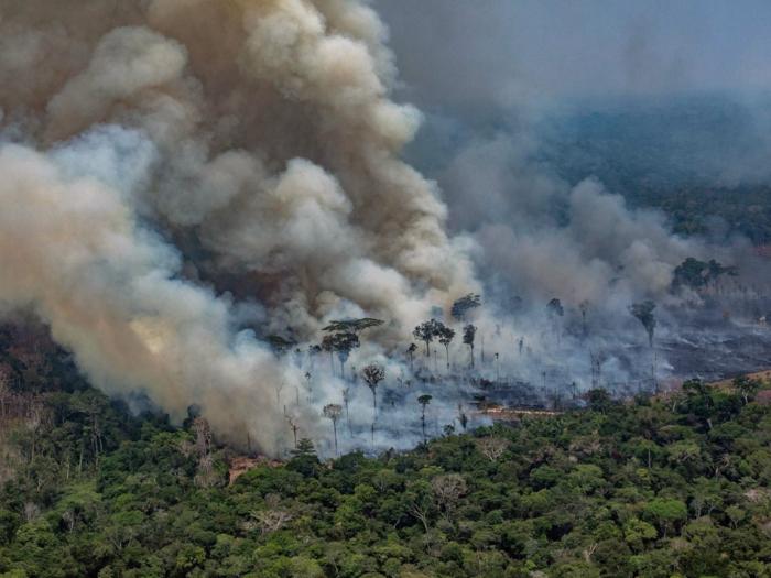 incendies amazinie leonardo dicaprio fondation