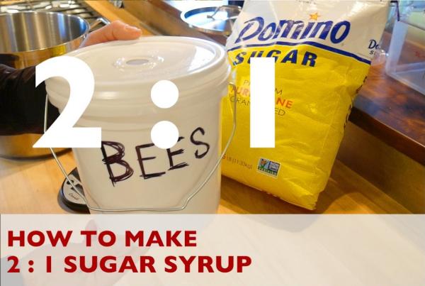 les abeilles sirop de sucre