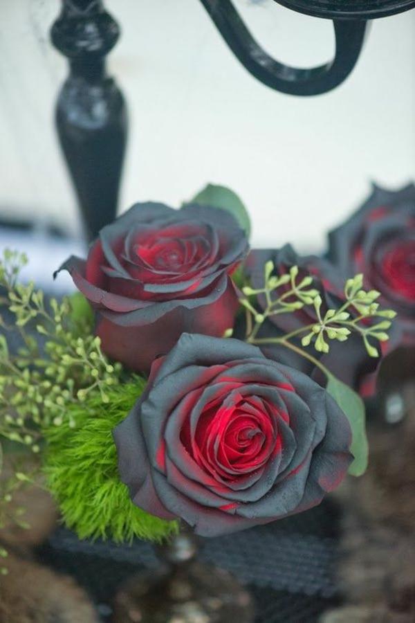 bricolage halloween roses noires