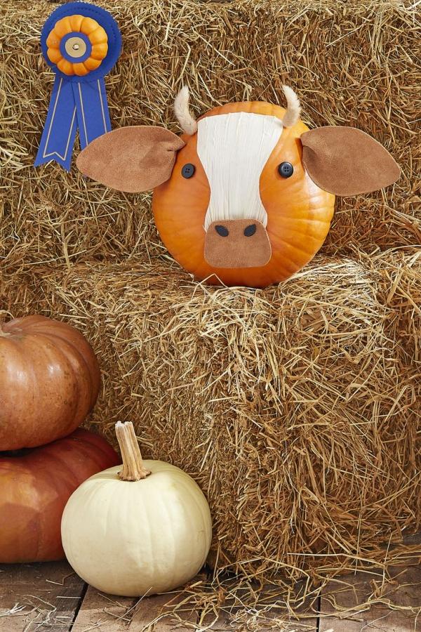 déco citrouille facileune vache insolite