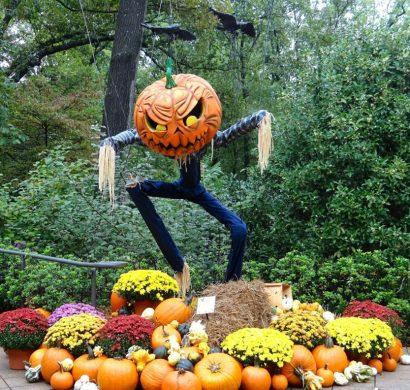 décoration halloween extérieur à fabriquer