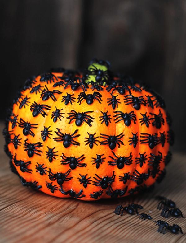 idée de déco extérieure pour halloween citrouille en plastique et des araignées noires