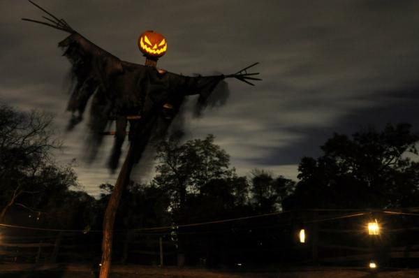 idée de décoration halloween extérieur fait maison épouvantail lugubre