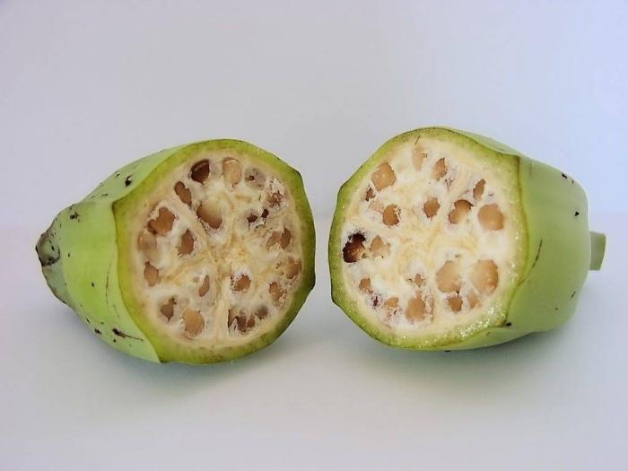 planter banane couper en deux