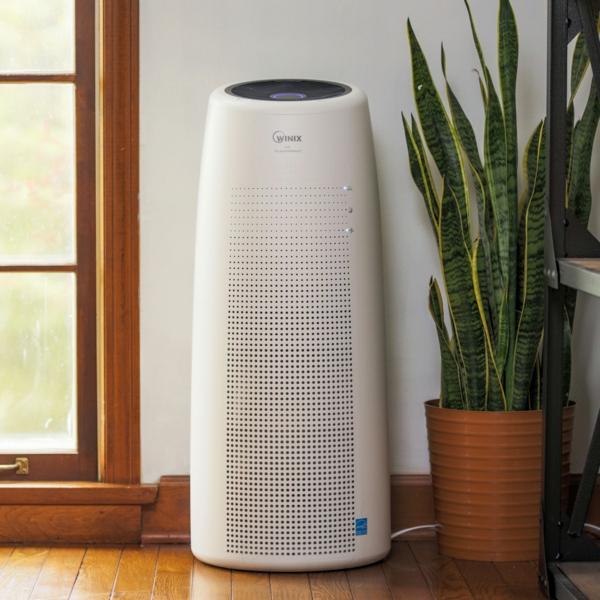 10 conseils pour supprimer les allergènes dans la maison acheter un purificateur d'air