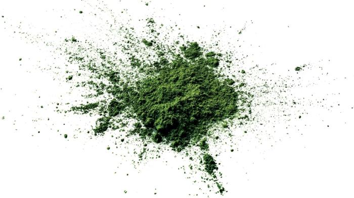 algue klamath en poudre