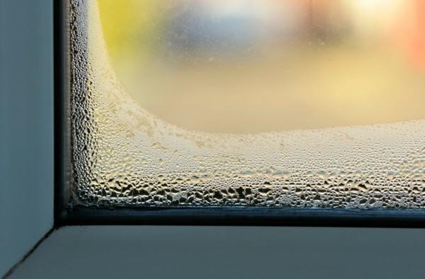 humidité condensation moisissure condensation sur les vitres des fenêtres