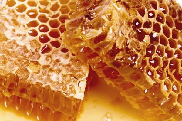 antibiotique naturel miel