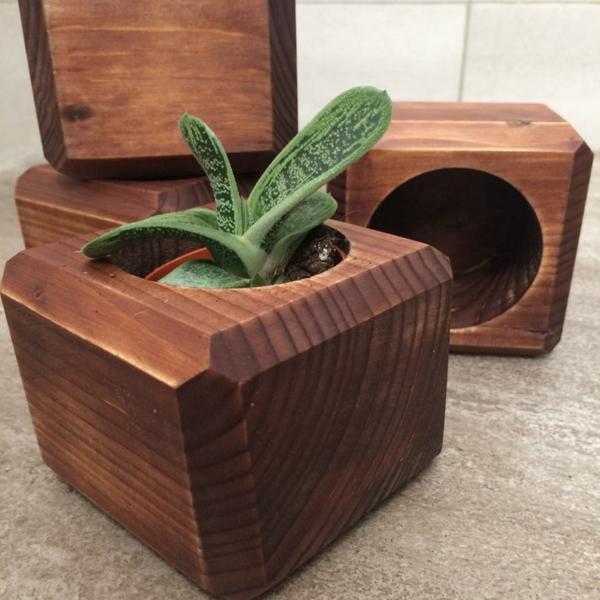 cadeau zéro déchet cache-pot de plantes en bois