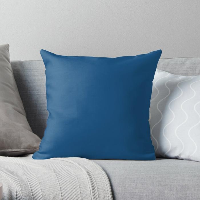 coussin classic blue couleur pantone 2020