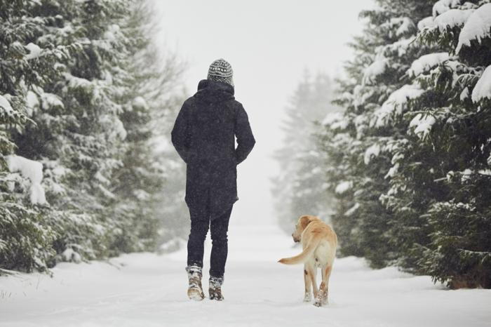 promenade en plein air détoxifier son corps
