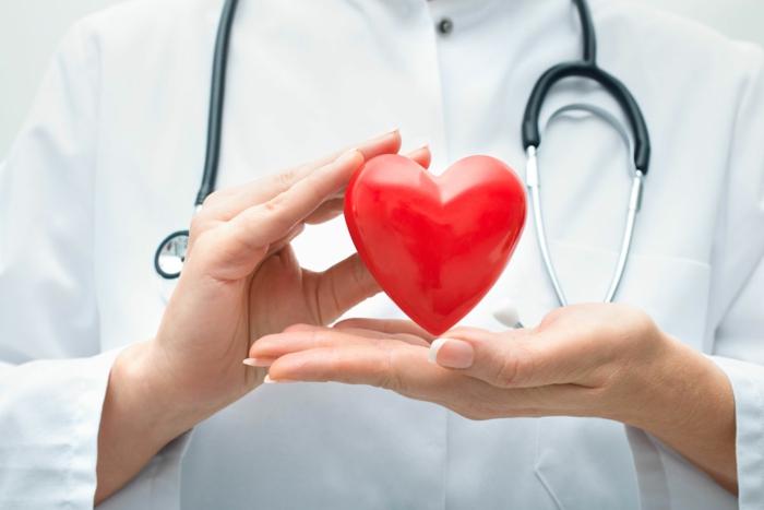 système cardivasculaire en bonne santé litchi bienfaits