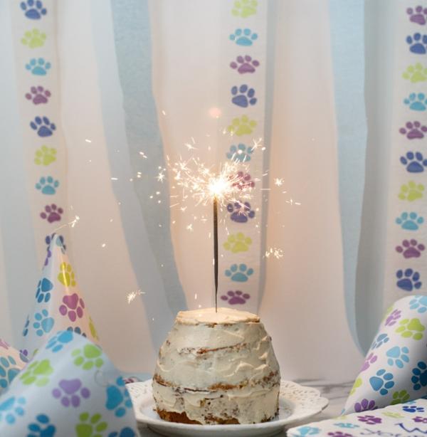 Recette de gâteau d'anniversaire pour chien sans céréales