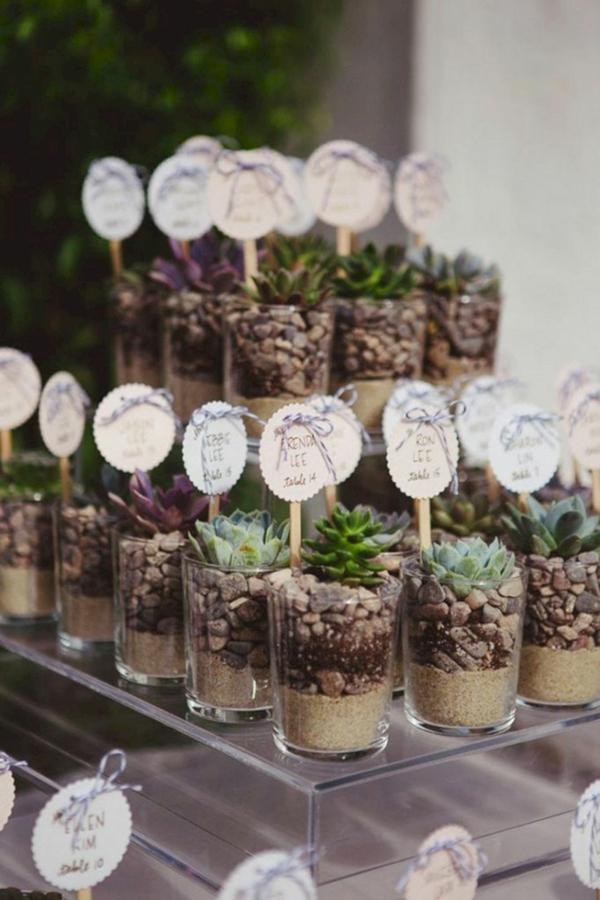 décoration salle de mariage style rustique plantes succulentes