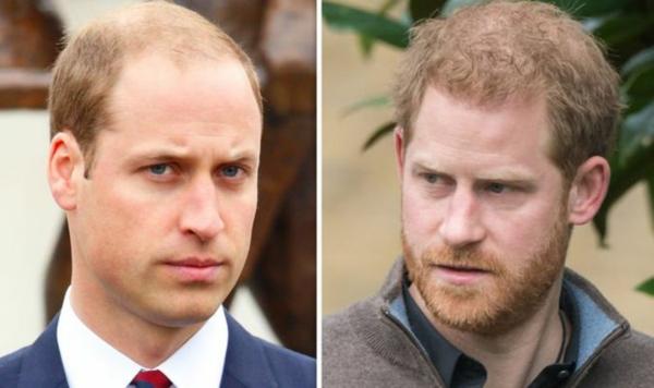 le duc de cambridge william et le duc de sussex harry