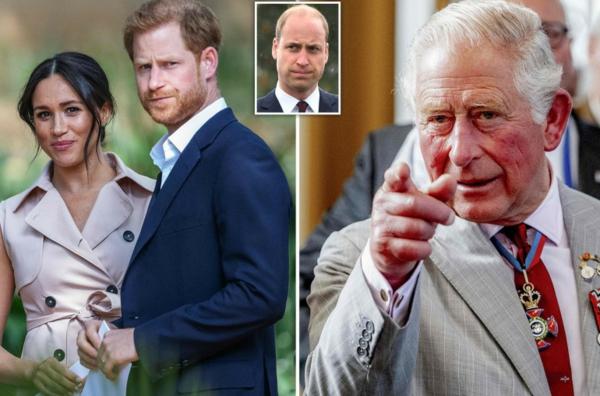 prince harry meghan markle prince william prince charles