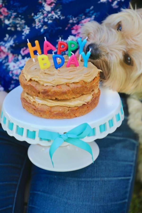 recette gâteau d'anniversaire pour chien glaçage beurre d'arachide