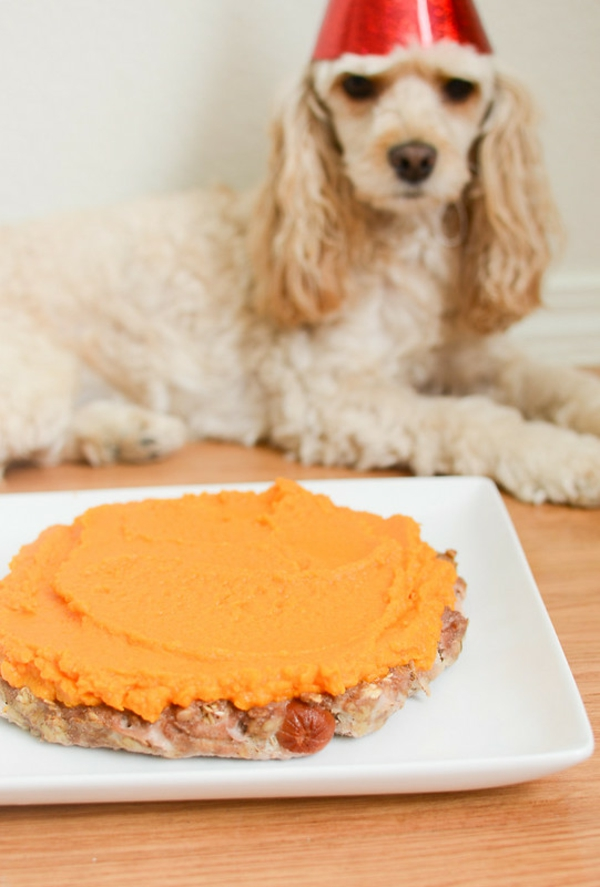 recette gâteau d'anniversaire pour chien poulet salami patate douce oeufs