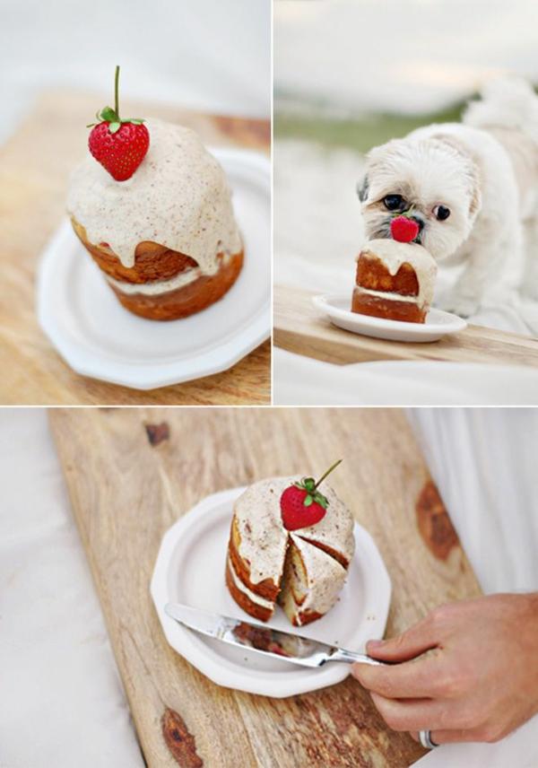 recette mini-gâteau d'anniversaire pour chien à la fraise