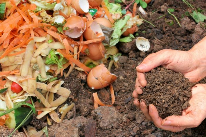 déchets de la cuisine compostage conseils jardiner au naturel