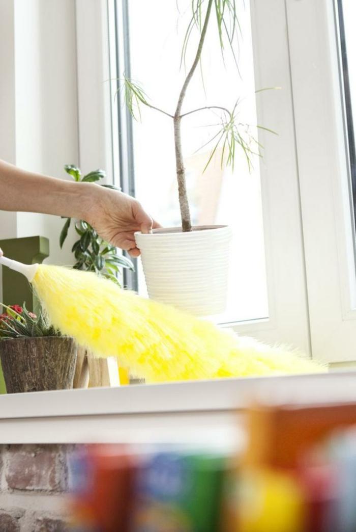 faire la poussière Oosouji art japonais de nettoyer son intérieur