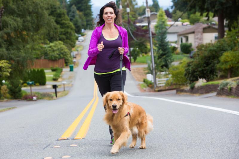 quelle race de chien choisir lors du jogging matinal