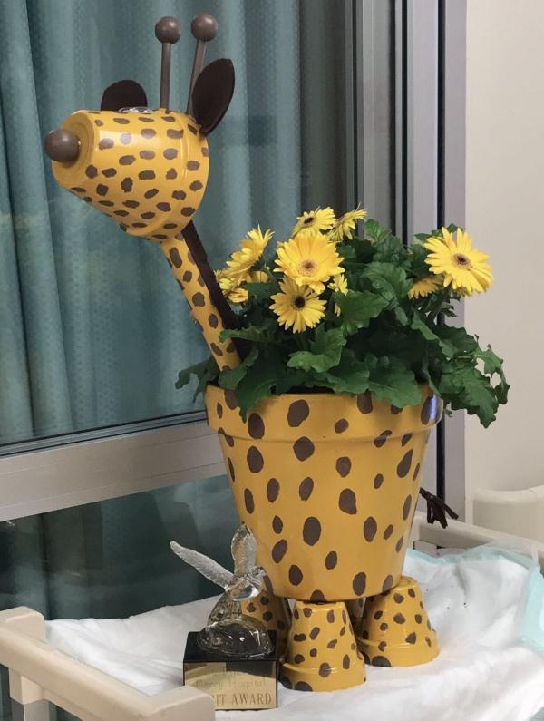 bricolage jardin avec des pots en terre cuite girafe