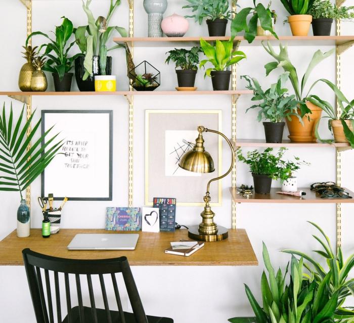 bureau à domicile beaucoup de plantes