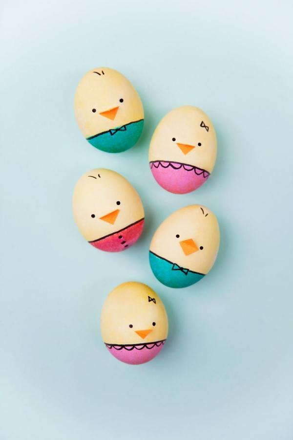 chasse aux oeufs de Pâques bébés poussins
