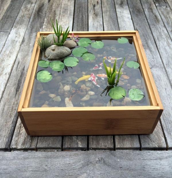 diy mini-bassin aquatique de véranda