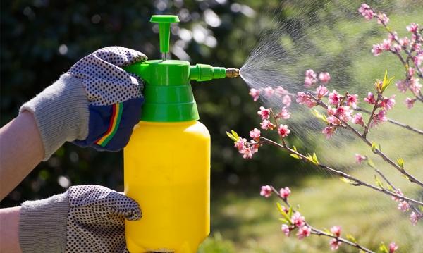 diy spray insectifuge au vinaigre