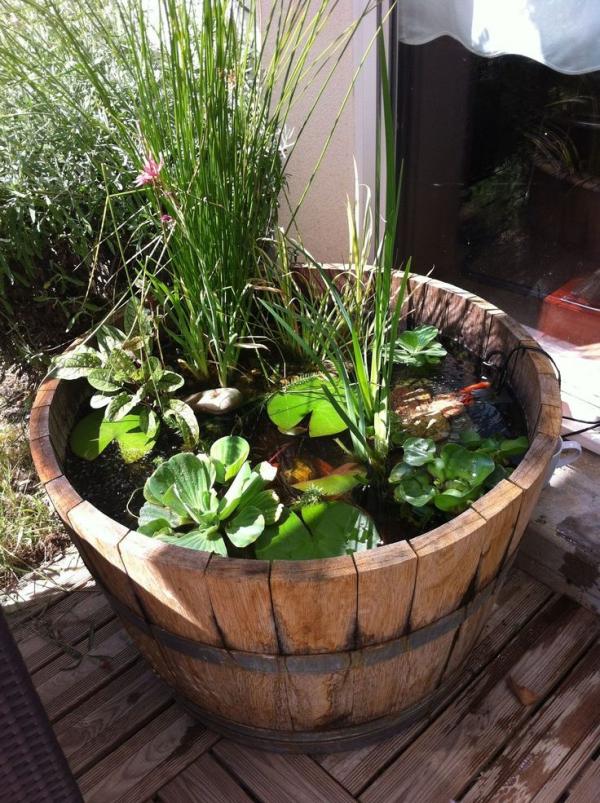 fabriquer soi-même un bassin aquatique de petite taille