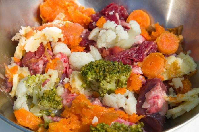 idée croquette chien avec des carottes et des brocoli