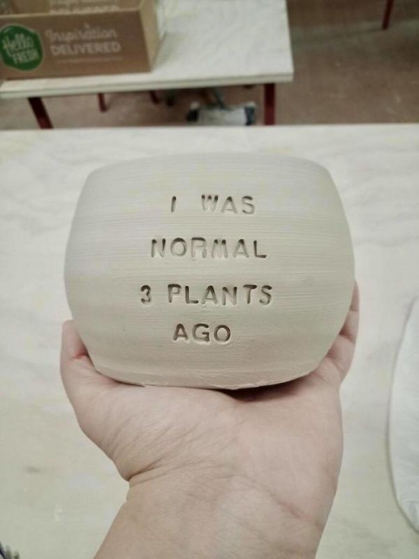 la céramique pour une plante verte