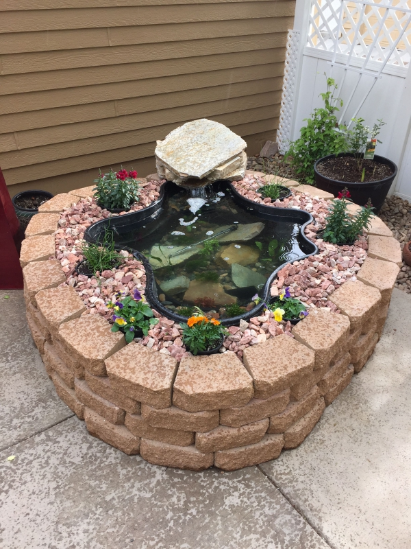 mini-bassin aquatique à faire soi-même avec des pierres