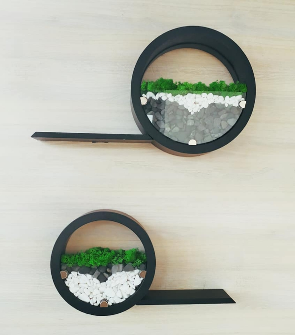 plantes succulentes combiner avec étagère