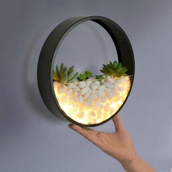 plantes succulentes comme lampe de chevet