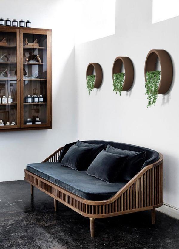 plantes succulentes décorer un mur