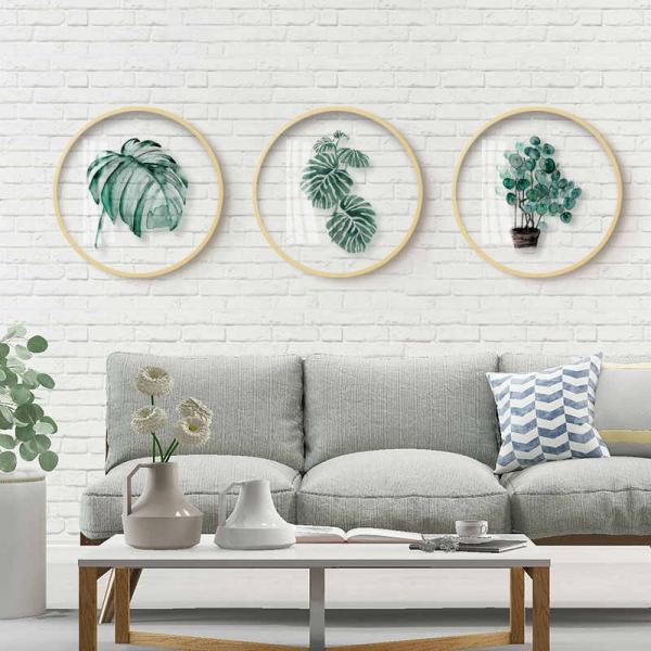 plantes succulentes motifs floraux