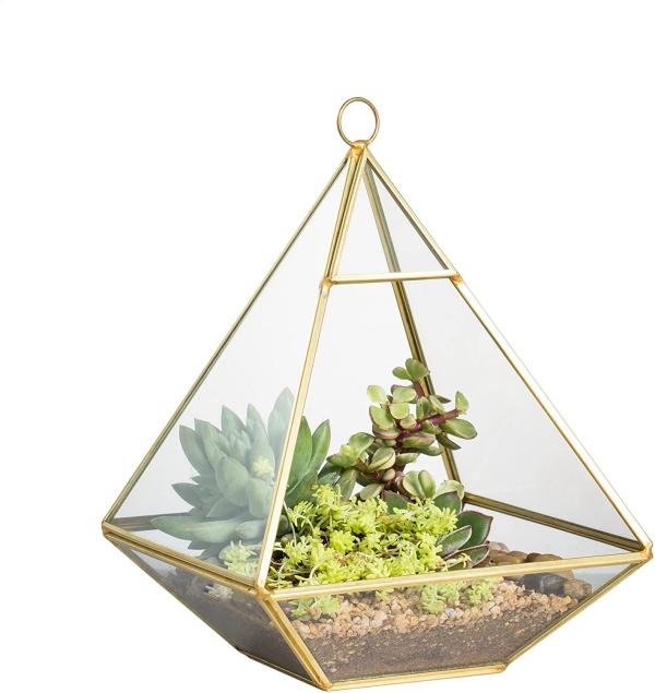 plantes succulentes pyramide à accrocher
