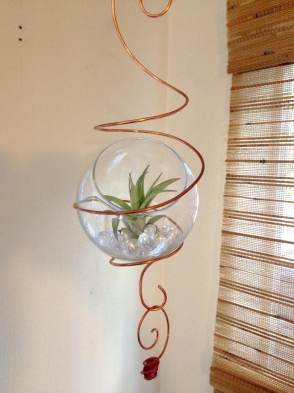 plantes succulentes une serpentine en laiton