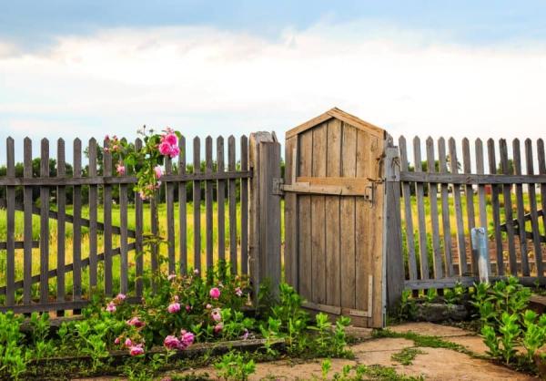 portillon de jardin en bois brut et palissade
