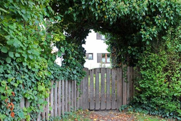 portillon de jardin en bois de cèdre