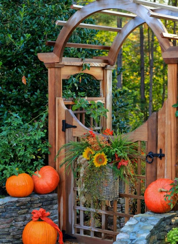 portillon de jardin en bois et arche en bois