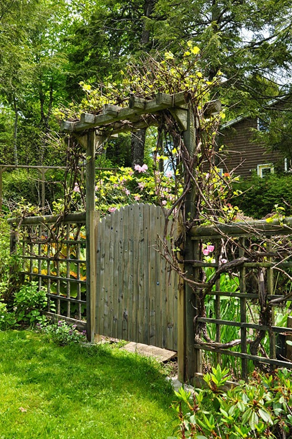 portillon de jardin en bois et fer